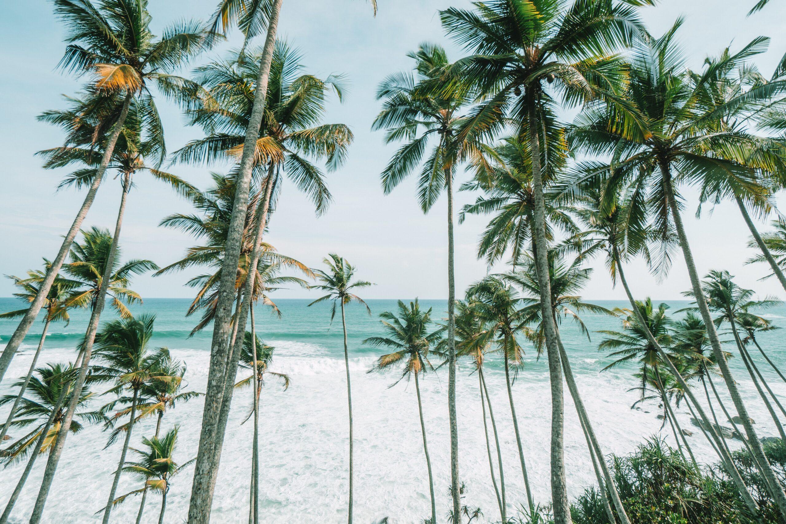 Jógatábor Costa Rica
